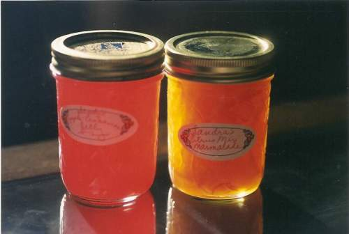 Homemade jellies